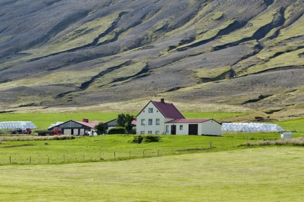 A farm in Bárðardalur valley. Photo by Lea Rekow